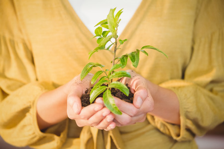 showing: Business woman showing a plant at work Stock Photo