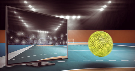 terrain de handball: Vue d'une balle contre terrain int�rieur de handball