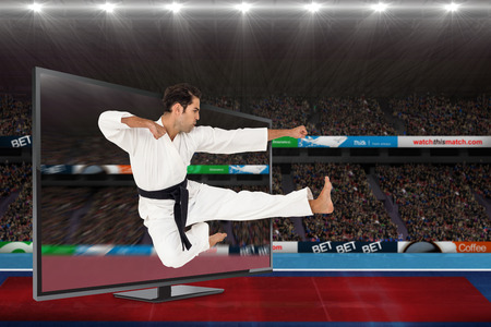 karateka: Fighter performing karate stance against view of a stadium Stock Photo