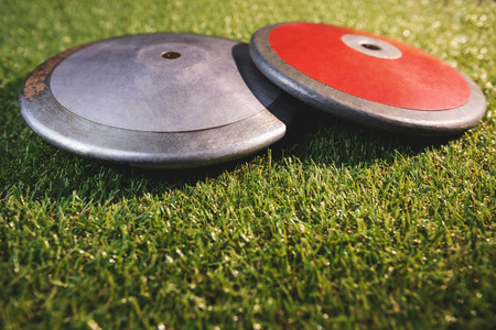 discus: Close up of discuses on grass Stock Photo