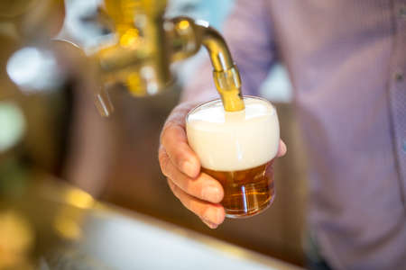 brewer: Brewer filling beer in beer glass from beer pump in bar