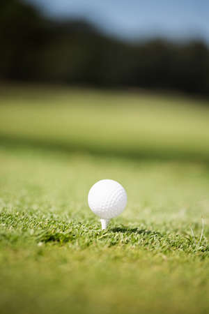 recreational pursuits: Close up of a golf ball on the tee LANG_EVOIMAGES