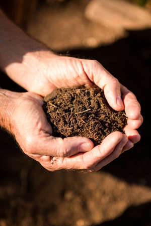 community garden: Cropped image of dirt in cupped hands at community garden LANG_EVOIMAGES