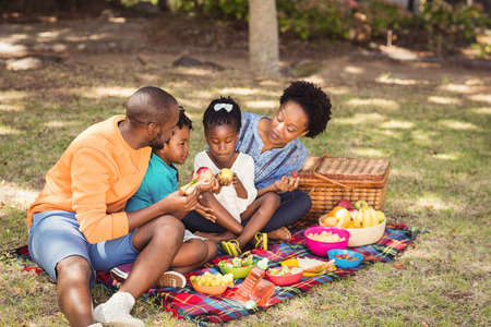 fond of children: Happy family eating together at park Stock Photo