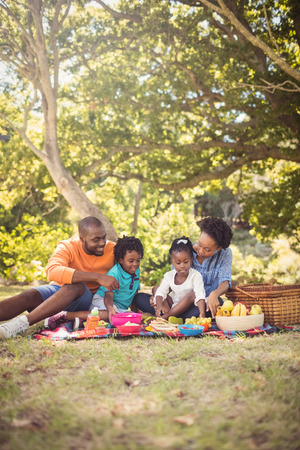 family eating: Happy family eating together at park Stock Photo