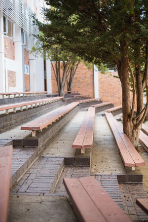 View of empty bench and tree at school