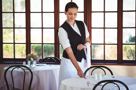 Smiling Waitress Cleaning Wine Glass In Restaurant Stock Photo - Restaurant table cleaner