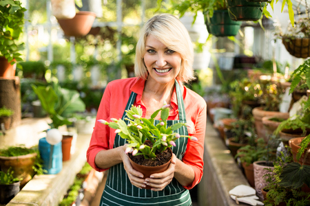 potted plant: Portrait of woman smiling while holding potted plant at greenhouse