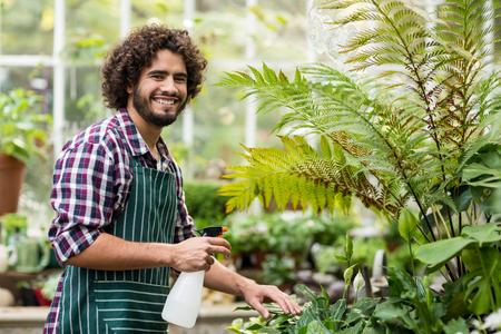 Retrato de feliz jardinero de las plantas de riego de sexo masculino en invernadero