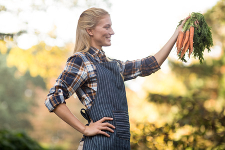 harvested: Smiling female gardener looking at harvested carrots outside greenhouse