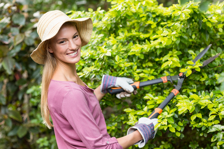 clippers: Portrait of happy female gardener pruning with clippers at greenhouse
