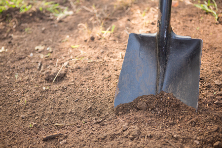 shovel in dirt: High angle view of shovel on dirt at community garden Stock Photo