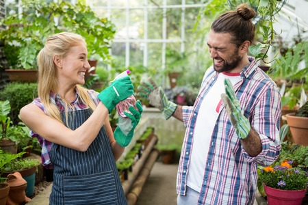 garden staff: Cheerful female gardener spraying water on colleague at greenhouse Stock Photo
