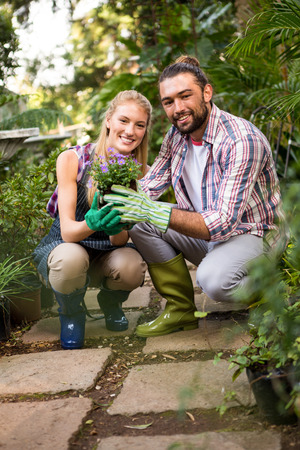 community garden: Portrait of happy young gardeners holding potted plant at community garden Stock Photo