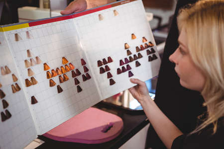 hair stylist: Woman selecting a hair color with stylist at the hair salon