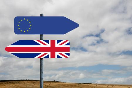 european union: european union flag against country scene