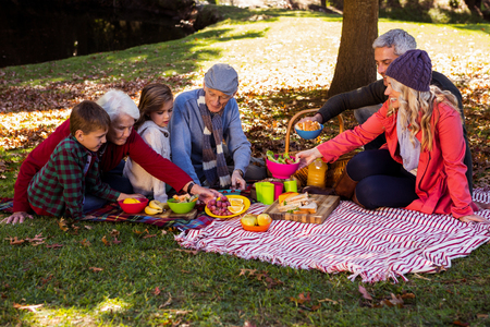 picnicking: Family picnicking in a park