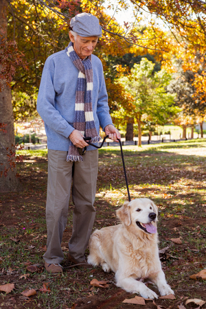 countryside loving: Elderly man keeping his dog on a lead in a park
