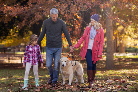 Family walking with dog at park during autumn Stock Photo