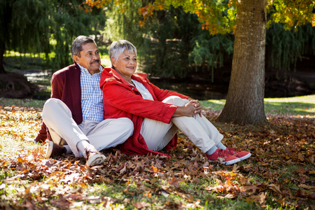 contemplated: Contemplated happy mature couple sitting on autumn leaves at park