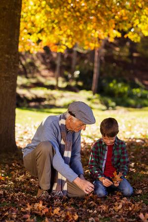 arrodillarse: El abuelo y el nieto que juega con las hojas de otoño en el parque