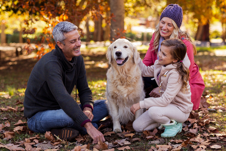 two stroke: Happy family sitting with dog at park during autumn Stock Photo