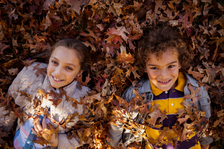 lying on leaves: High angle portrait of happy siblings lying on autumn leaves at park Stock Photo