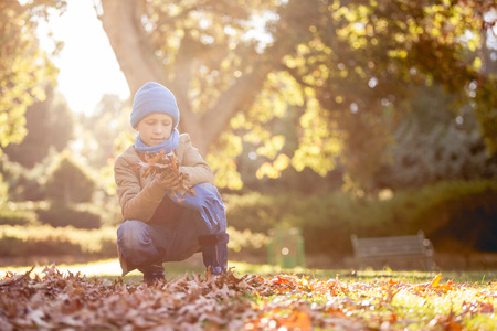 crouching: Boy holding autumn leaves while crouching at park