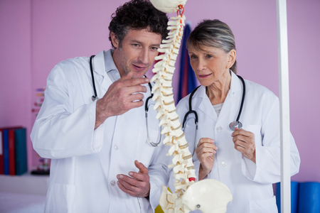 physiotherapists: Two physiotherapists discussing with spine model in clinic