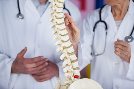 physiotherapists: Mid section of physiotherapists discussing with spine model in clinic