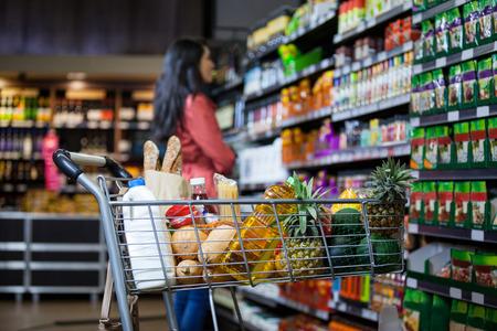 Varias tiendas de comestibles en la cesta de la sección de comestibles del supermercado Foto de archivo - 63627592