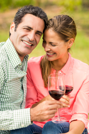 healthy men: Happy couple holding glasses of wine in vineyard Stock Photo
