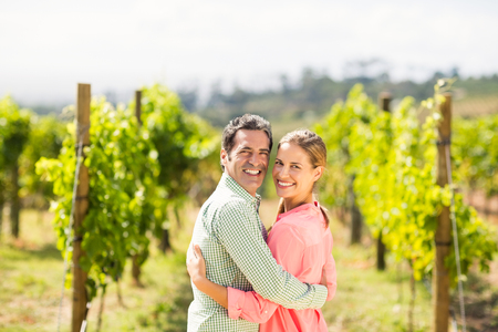 arm around: Portrait of happy couple standing with arm around in vineyard