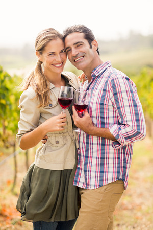 Happy couple holding glasses of wine in vineyard Reklamní fotografie