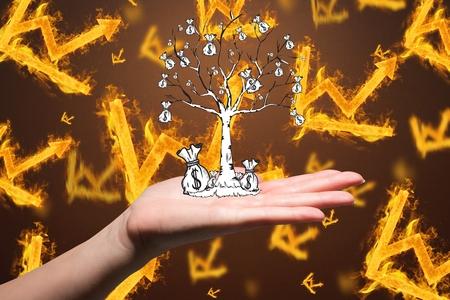 burning money: composite of hand holding money tree over burning graph background