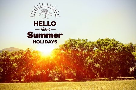 digital composite: Digital composite of hello there summer holidays vector