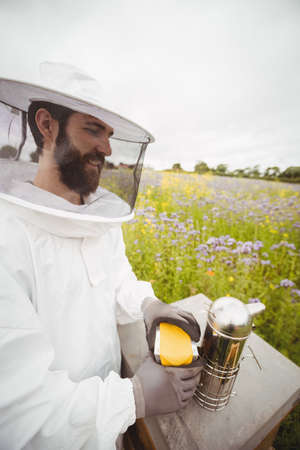 smoker: Beekeeper using bee smoker in the field LANG_EVOIMAGES