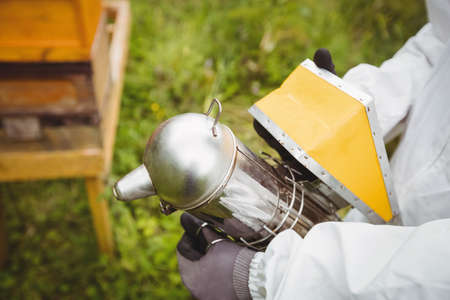 Beekeeper using bee smoker in the field LANG_EVOIMAGES