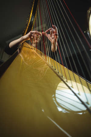 attentive: Attentive woman playing a harp in music school