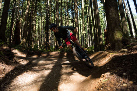 adventuring: Male cyclist cycling in forest on a sunny day LANG_EVOIMAGES