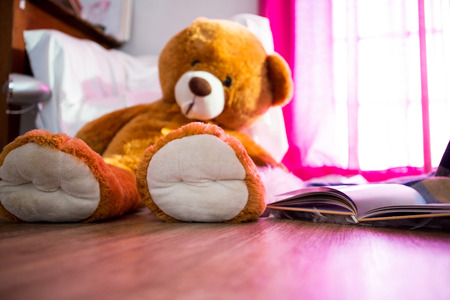 domicile: Teddy bear and book lying on wooden floor at home