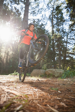 Male mountain biker riding bicycle in the forest on a sunny day Stock Photo