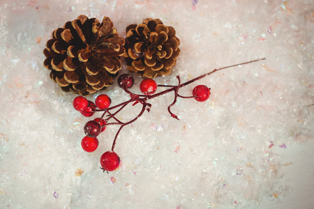 snow cone: Pine cone and red cherry on snow during christmas time Stock Photo