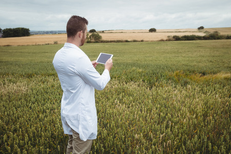 Agronomist using digital tablet in the field on a sunny day