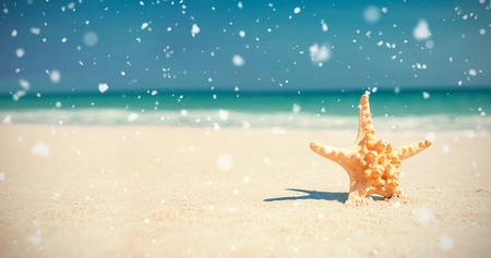 Snow falling against starfish in sand on beach