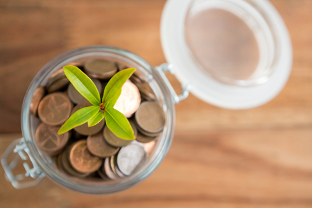 Plant growing out of coins jar on table