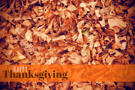 Digitally generated image of happy thanksgiving text against dead leaves Stock Photo