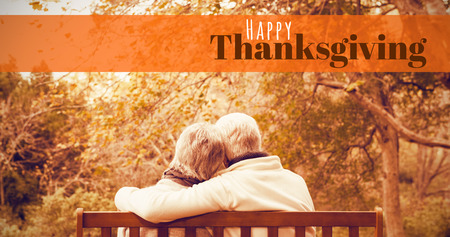 active content: Digitally generated image of happy thanksgiving text against senior couple in the park Stock Photo