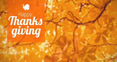 Thanksgiving greeting text against branches and autumnal leaves Stock Photo