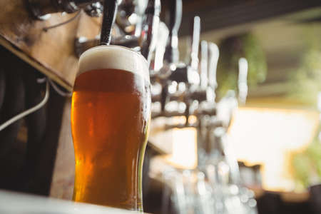 beer pump: Close-up of beer glass with froth in a bar
